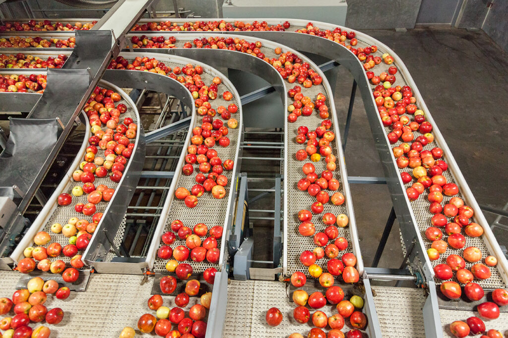 procesos-en-la-industria-alimentaria