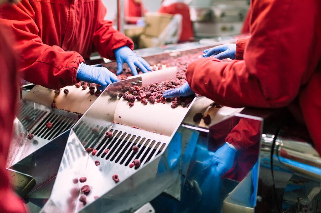 procesos-industria-alimentaria