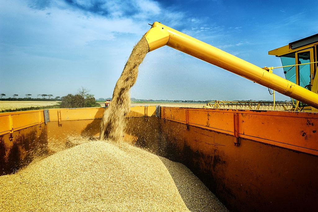maquinaria-para-el-tratamiento-del-cereal