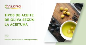 tipos-de-aceite-de-oliva-segun-la-aceituna