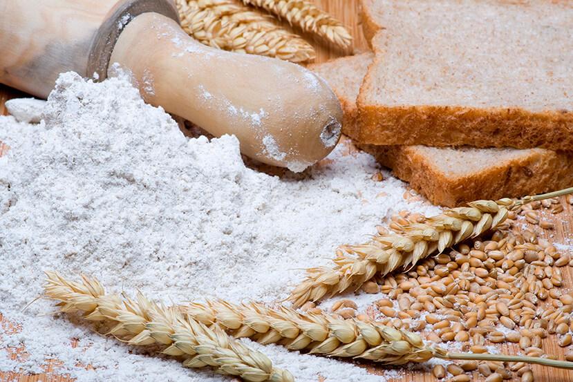 Procesamiento-industrial-del-trigo